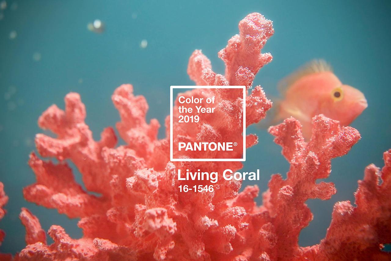 Color del Año Pantone 2019: Living Coral